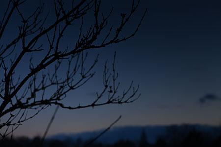 Winter Abendstimmung